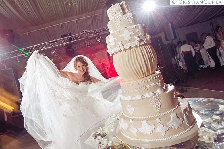 fotografii nunta tirgu jiu © cristian conea (121)