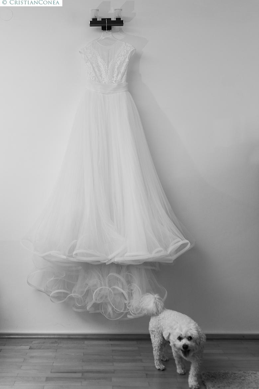 fotografii nunta targu jiu © cristian conea (24)