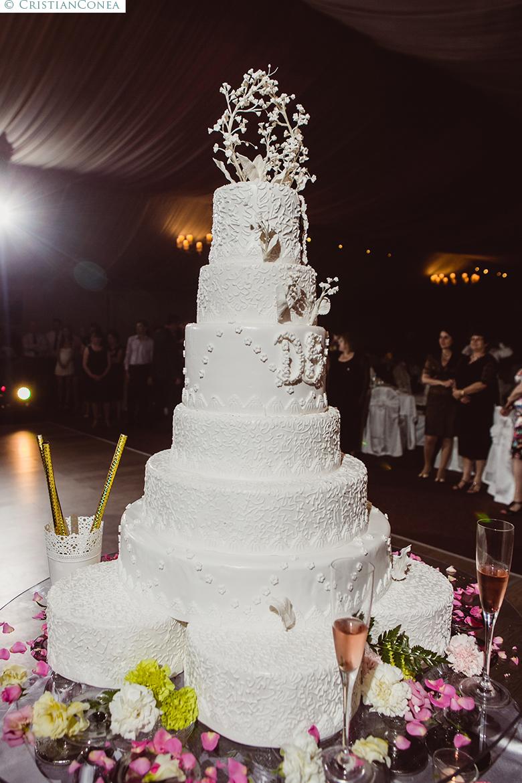 fotografii nunta targu jiu © cristian conea (94)
