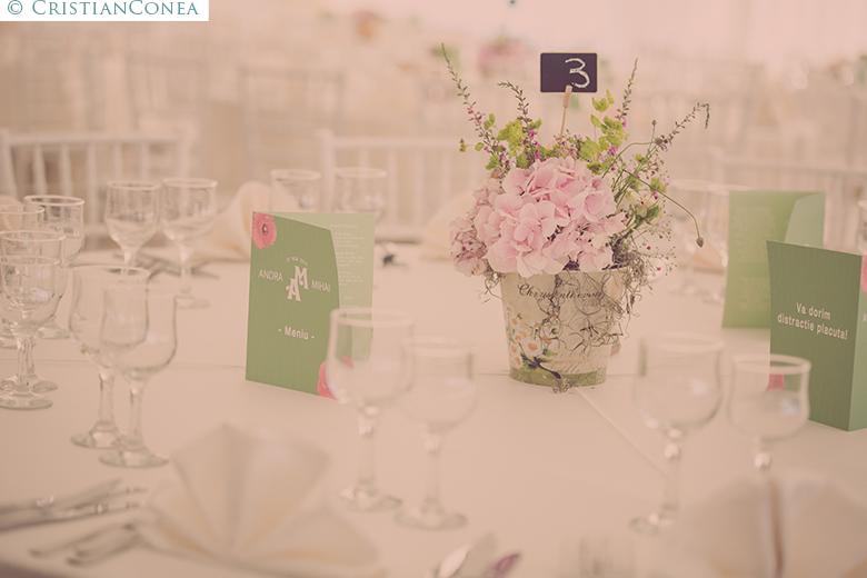 fotografii nunta craiova © cristian conea (80)