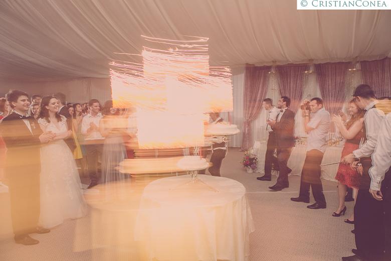 fotografii nunta craiova © cristian conea (86)