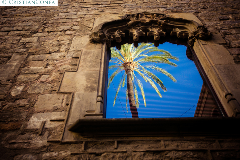 fotografii barcelona © cristian conea 07