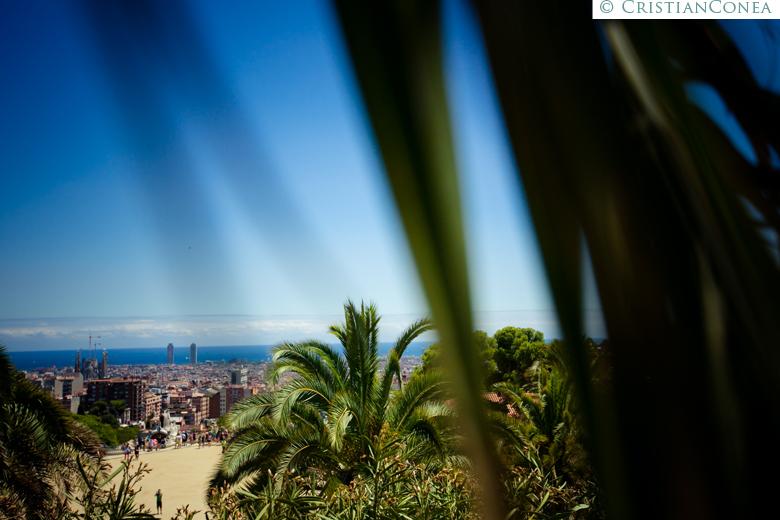 fotografii barcelona © cristian conea 29