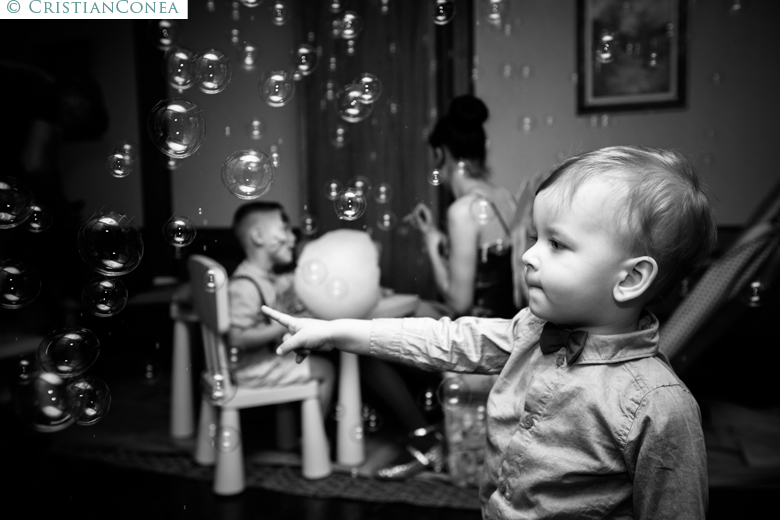 fotografii taiere mot © cristian conea 44