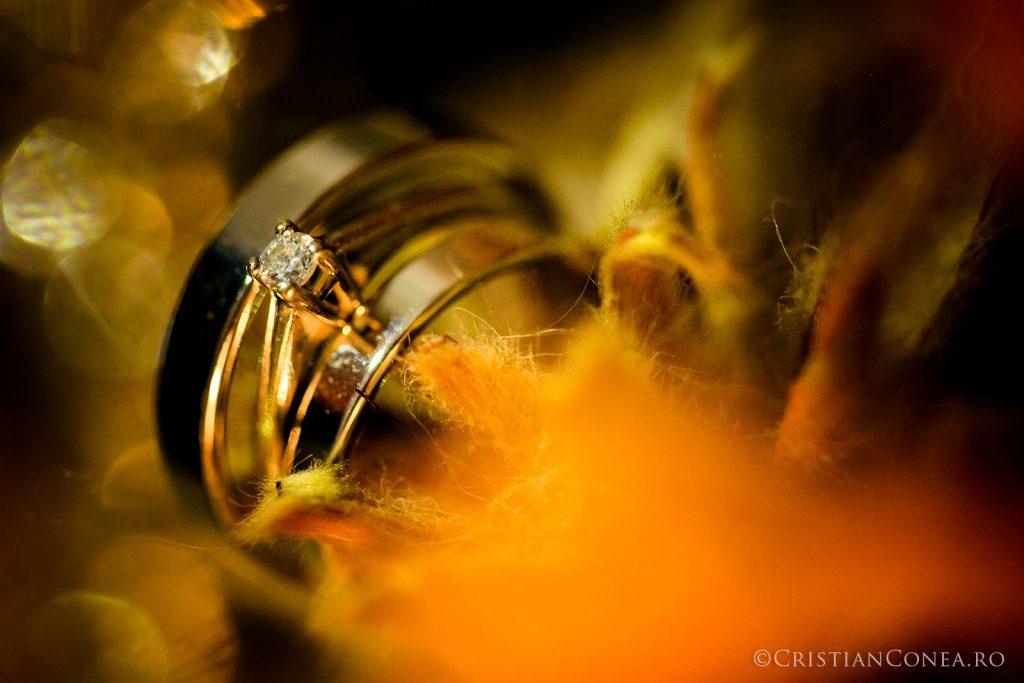 fotografii-nunta-cristian-conea-01