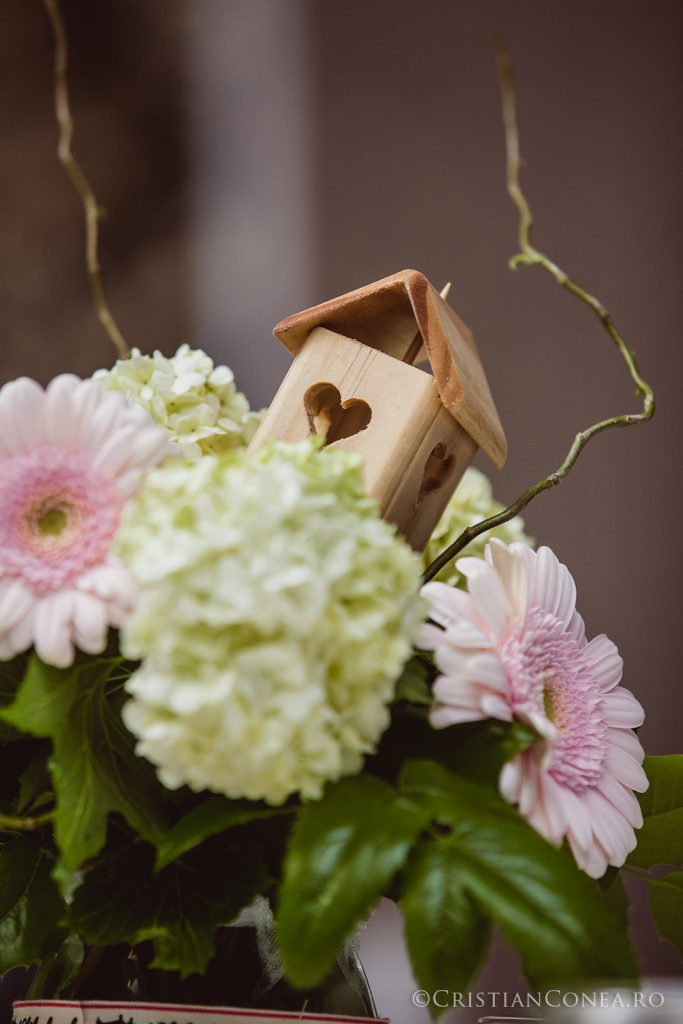 fotografii-nunta-craiova-50