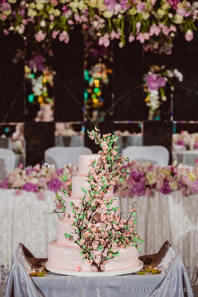 fotografii-nunta_a-m_cristian-conea-123