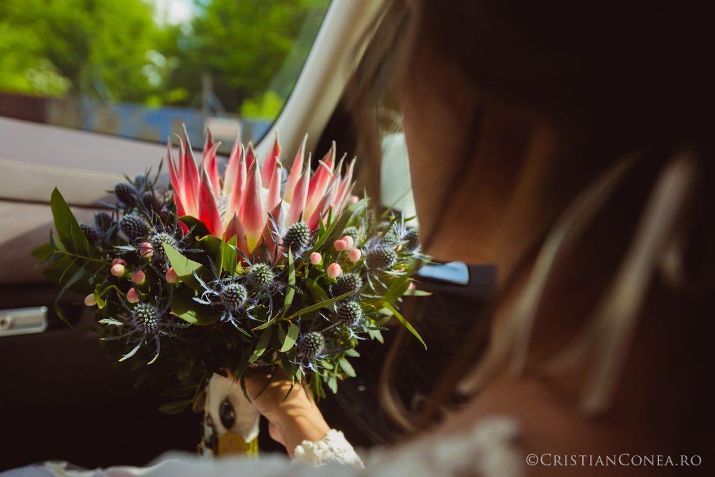 fotografii nunta craiova 41