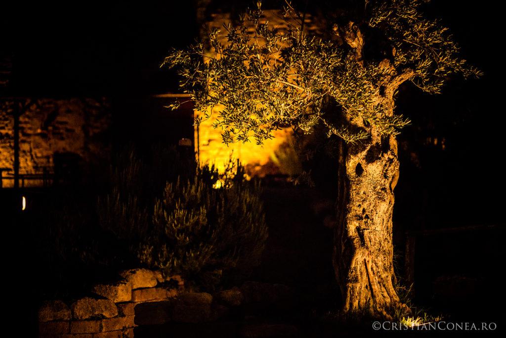 fotografii-italia-cristian-conea-106