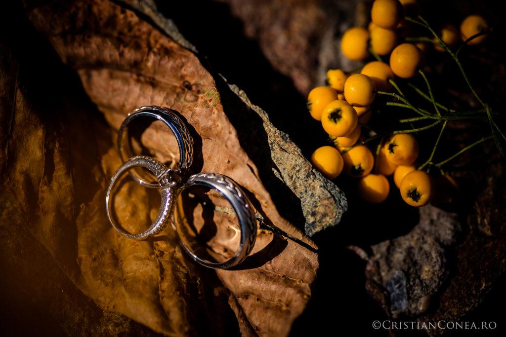 fotografii-nunta-craiova-cristian-conea-47